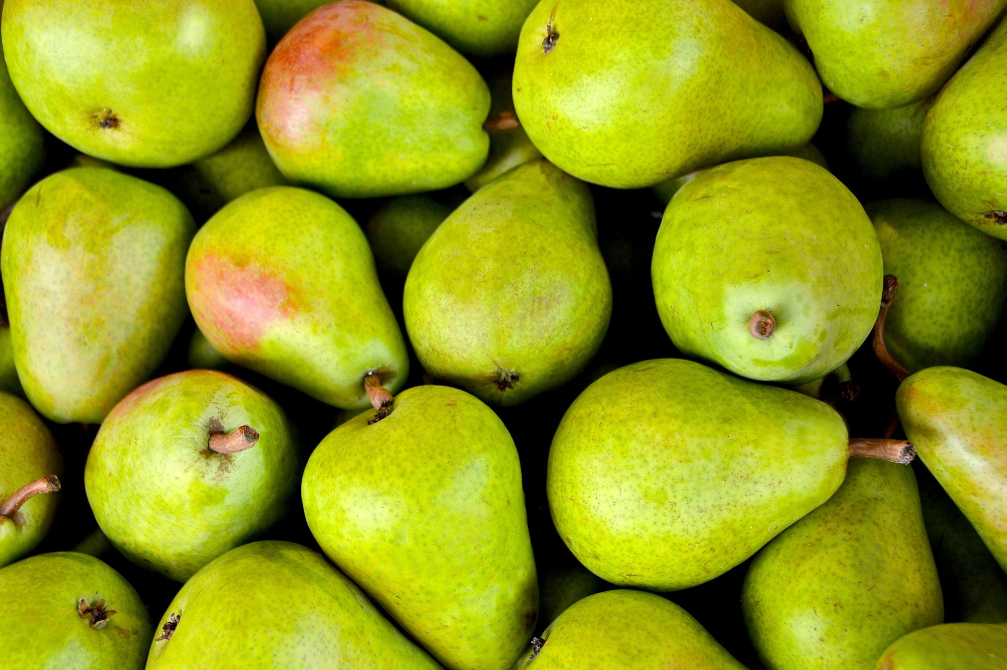 fruit-1534494