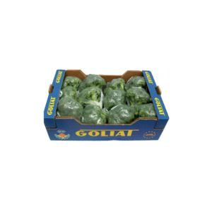xbroccoli-1024x1024.png.pagespeed.ic.OFlfI-FTRm