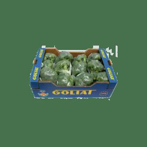 xbroccoli-1024x1024.png.pagespeed.ic.OFlfI-FTRm